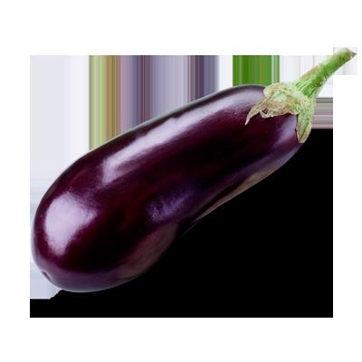 Berengena eggplant